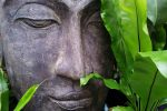 art-buddha-meditation-66307 (1)