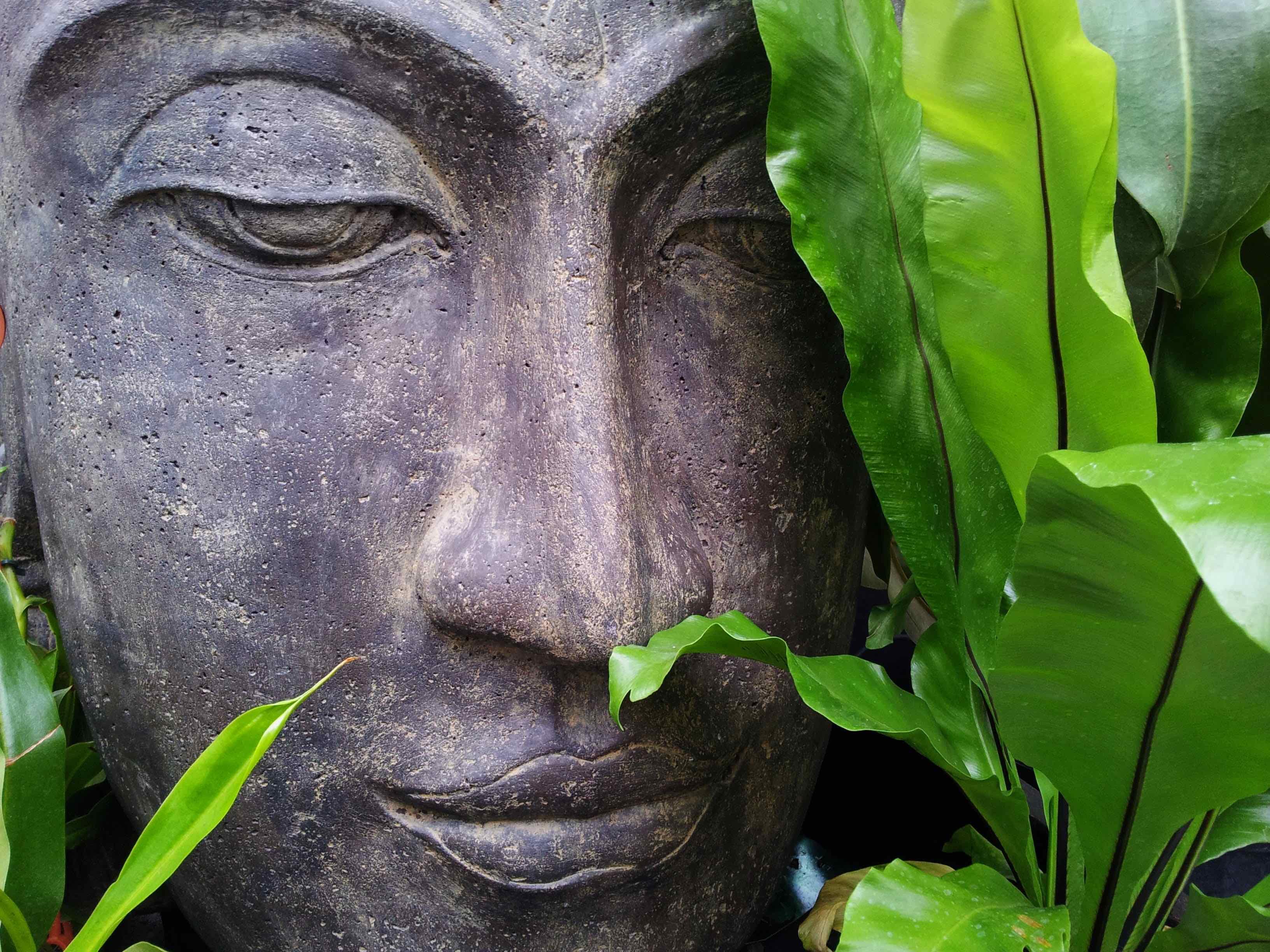 Mindfulness, Meditation, Breathwork